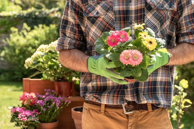 gardener-4186301_1920